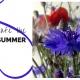 Safe the summer